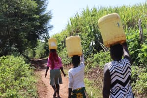 The Water Project: Indulusia Community, Wanyama Spring -  Clean Water En Route To Use