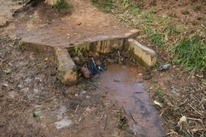 The Water Project: Bukhakunga Primary School -  The Spring Where The Pupils Get Water
