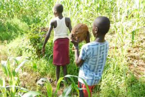 The Water Project: Musango Community, Wambani Spring -  All Ages Lent A Helping Hand