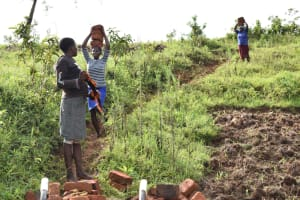The Water Project: Ikoli Community, Odongo Spring -  Community Members Bring Construction Materials To The Site