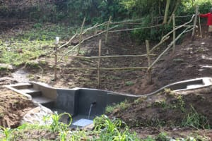 The Water Project: Ikoli Community, Odongo Spring -  Protected Odongo Spring