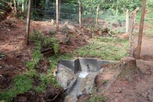 The Water Project: Shamakhokho Community, Wizula Spring -  Protected Wizula Spring