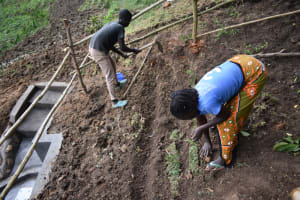The Water Project: Ikoli Community, Odongo Spring -  Planting Grass Above Catchment Area