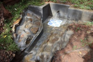 The Water Project: Shamakhokho Community, Wizula Spring -  Water Flows At Wizula Spring