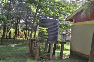The Water Project: Bukhakunga Primary School -  A Dry Rainwater Plastic Tank Connected To Stand Pipes