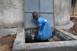 The Water Project: Lwombei Primary School -  Collecting Water