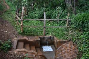 The Water Project: Harambee Community, Elijah Kwalanda Spring -  Elijah Kwalanda Spring
