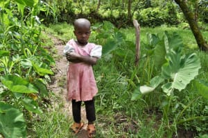 The Water Project: Litinye Community, Shivina Spring -  Rosemary I