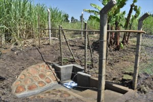 The Water Project: Malekha Central Community, Misiko Spring -  Misiko Spring Waterpoint