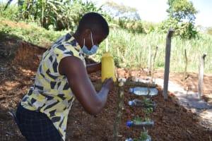 The Water Project: Makhwabuye Community, Majimazuri Lusala Spring -  Making A Leaky Tin