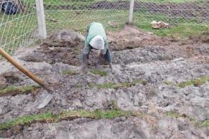 The Water Project: Muyundi Community, Magana Spring -  Grass Planting