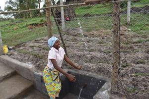 The Water Project: Muyundi Community, Magana Spring -  Ivy Celebrating Water