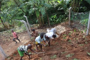 The Water Project: Malekha West Community, Soita Spring -  Grass Planting