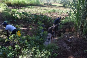 The Water Project: Malanga Community, Malava Housing Spring -  Site Clearance
