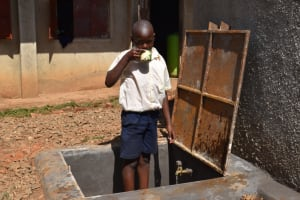 The Water Project: Kapsegeli KAG Primary School -  Safe Water For Drinking