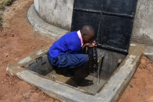 The Water Project: Gimengwa Primary School -  Water Celebrations