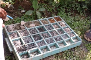 The Water Project: Muriola Primary School -  Rock Samples