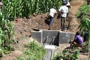 The Water Project: Ematetie Community, Amasetse Spring -  Planting Grass Above Catchment Area