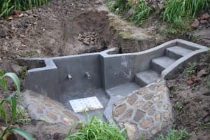The Water Project: Ematetie Community, Amasetse Spring -  Steps To The Spring