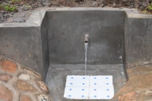 The Water Project: Musango Community, Wambani Spring -  Clean Water Flowing