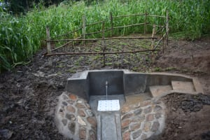 The Water Project: Musango Community, Wambani Spring -  Protected Wambani Spring