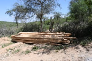 The Water Project: Lema Community A -  Lumbar For Construction