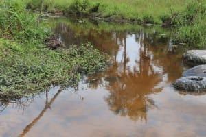 The Water Project: Kamasondo, Bross 1 -  Alternate Water Source