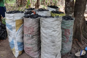 The Water Project: Kamasondo, Bross 1 -  Bags Of Charcoal