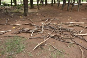 The Water Project: Ingavira Primary School -  Firewood Out Drying