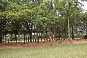 The Water Project: Ingavira Primary School -  School Farm