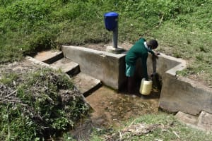 The Water Project: Mali Mali Primary School -  Fetching Water From Spring