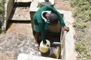 The Water Project: Mali Mali Primary School -  Water From Protected Spring