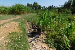 The Water Project: Shianda Community, Akhonya Spring -  Community Breaks Rock To Gravel