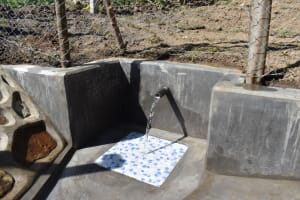 The Water Project: Shianda Community, Akhonya Spring -  Water At Akhonya Spring