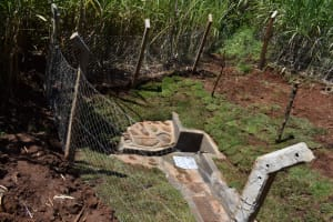 The Water Project: Lukala West Community, Luka Spring -  Complete Spring