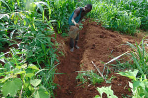 The Water Project: Lukala West Community, Angatia Spring -  Drainage
