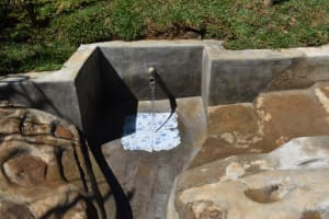 The Water Project: Lukala West Community, Angatia Spring -  Clean Flowing Water