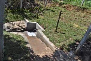 The Water Project: Lukala West Community, Angatia Spring -  Flowing Water At Spring