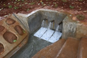 The Water Project: Shikoye Community, Kwa Witinga Spring -  Clean Water Flowing