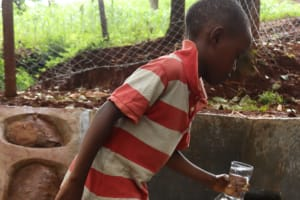 The Water Project: Shikoye Community, Kwa Witinga Spring -  Fetching Water In A Glass To Quench Thirst