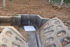 The Water Project: Shisasari Itumbu Community, Mathias Juma Spring -  Water Flowing