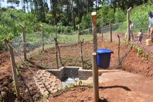 The Water Project: Bumira Community, Savai Spring -  Complete Savai Spring