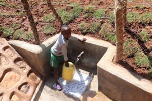 The Water Project: Bumira Community, Savai Spring -  Fetching Water At Savai Spring