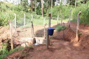 The Water Project: Bumira Community, Savai Spring -  Savai Spring