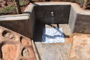 The Water Project: Bumira Community, Savai Spring -  Water Flowing