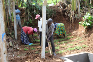 The Water Project: Shibikhwa Community, Musotsi Spring -  Grass Planting