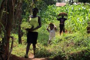 The Water Project: Shibikhwa Community, Musotsi Spring -  Community Members Bring Grass