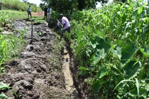 The Water Project: Sundulo B Community, Luvisia Spring -  Drainage Channel