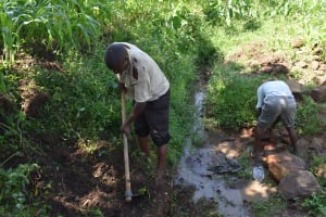 The Water Project: Sundulo B Community, Luvisia Spring -  Excavation