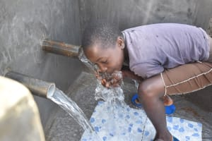 The Water Project: Sundulo B Community, Luvisia Spring -  A Sip Of Clean Water